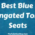 Best Blue Elongated Toilet Seats