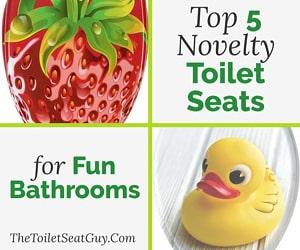 Novelty toilet seat