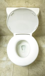 Top Recommended Best Value Large Toilet Seat For Heavy People 2016