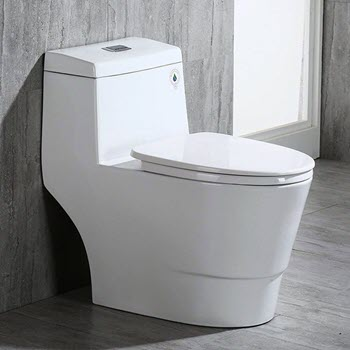 Best Toilet With Dual Flush