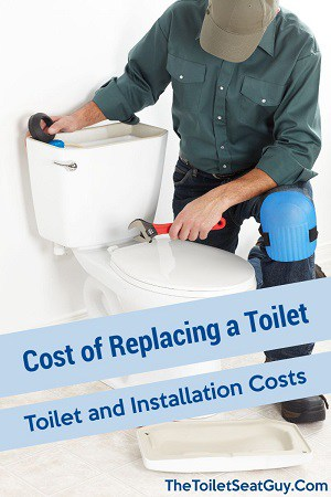 Cost of Replacing a Toilet