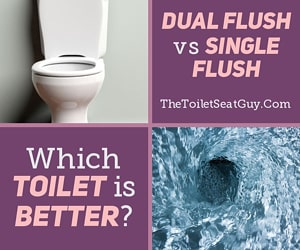 Dual Flush vs Single Flush